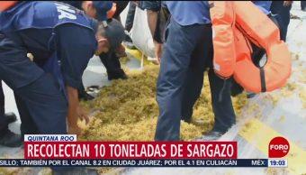 FOTO: Recolectan 10 toneladas de sargazo en Quintana Roo, 18 MAYO 2019