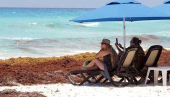 Sargazo ahuyenta a turistas de Quintana Roo; hoteleros bajan precios