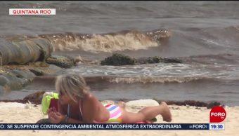 FOTO: Sargazo afecta llegada de turistas en Quintana Roo, 19 MAYO 2019