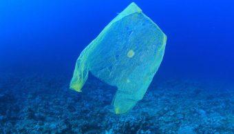 Video: Encuentra bolsa de plástico en lugar más profundo
