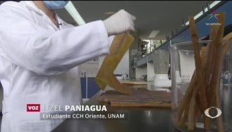 Foto: Estudiantes Unam Popote Cáscaras Mango 6 Junio 2019