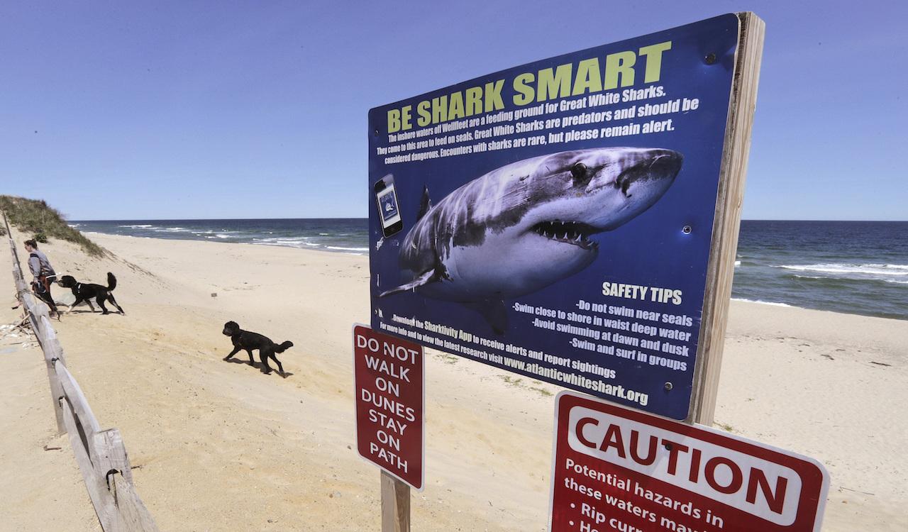 Ataque-tiburon-pierna-amputada-adolescente-Carolina-Norte