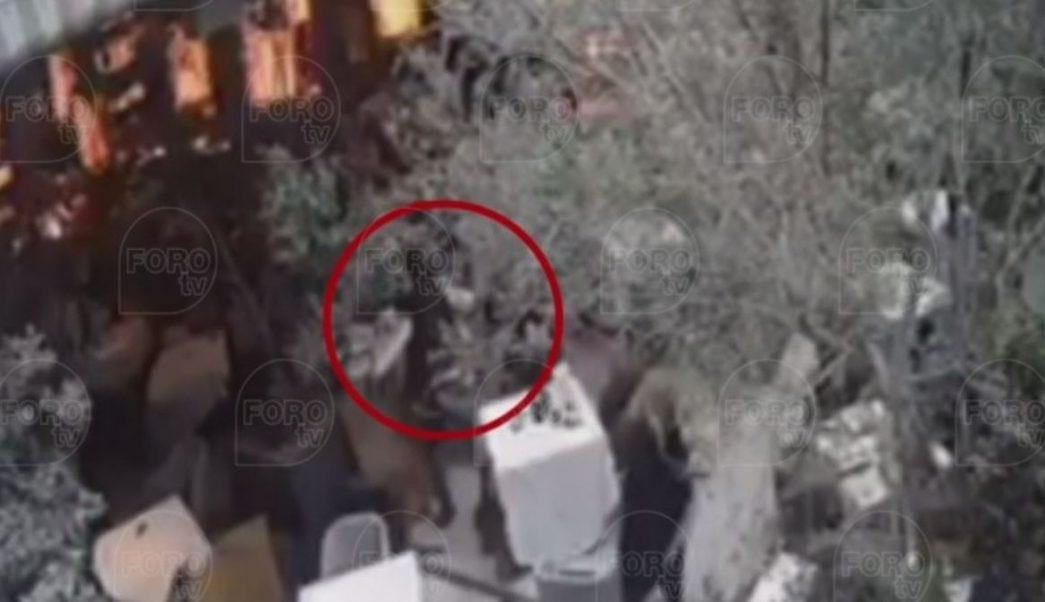 Ataque contra israelíes en Plaza Artz.