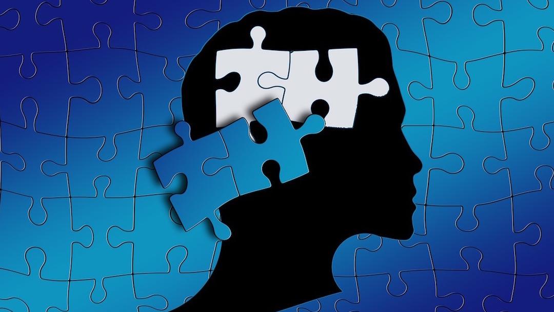 Autismo-severo-aprende-idiomas-Juli-Lanser-Mayer-nino-autistico
