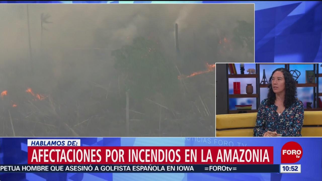 FOTO: Afectaciones por incendios en la Amazonia, 24 Agosto 2019