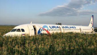 Avión ruso choca con parvada y aterriza de emergencia en campo de maíz