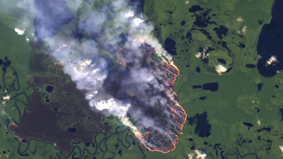 Foto: Los incendios son tan intensos que se pueden ver desde el espacio, 21 agosto 2019