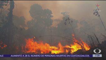 Brasil acepta ayuda de Chile contra incendios en selva amazónica