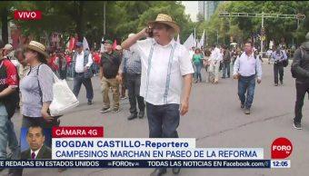 Campesinos marchan sobre Paseo de la Reforma