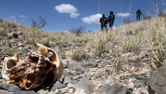 Grupo 'Solecito', en busca de más fosas clandestinas, en Veracruz