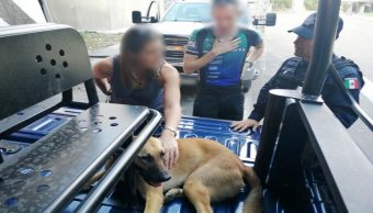 Muere perrito de la embajadora de Reino Unido rescatado en la México-Toluca