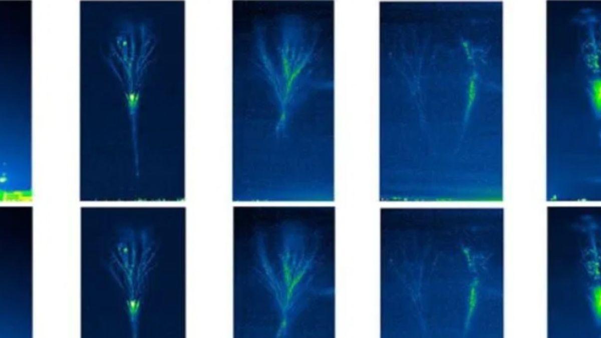 Foto: Los expertos utilizaron una cámara de alta velocidad que opera a 5000 imágenes por segundo. Twitter/@NatureComms