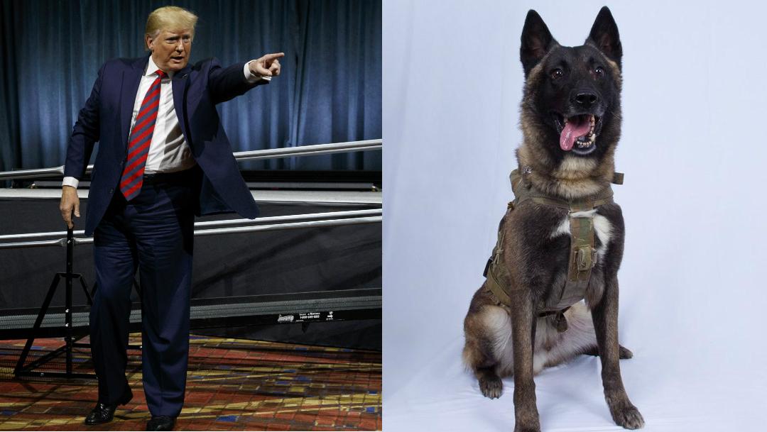 Donald-Trump-Estado-Islamico-elemento-canino-perro