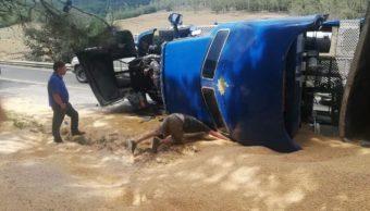 Exceso de velocidad volca a tráiler sobre la México- Tuxpan, en Hidalgo