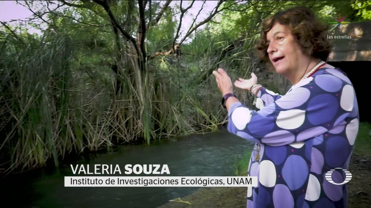 Foto: Valeria Souza Primera Mexicana Academia Ciencias EU 15 Octubre 2019