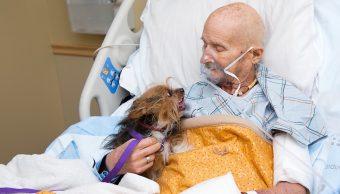 Veterano-guerra-ultimo-deseo-perrito-encuentro-emotivo