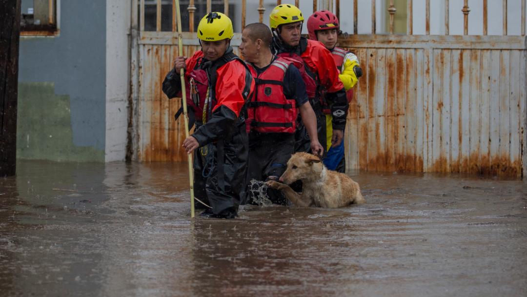 inundaciones tijuana