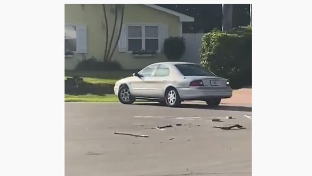 Foto: Captan a perro dando vueltas solo en un auto, 22 de noviembre de 2019 (Captura de video)