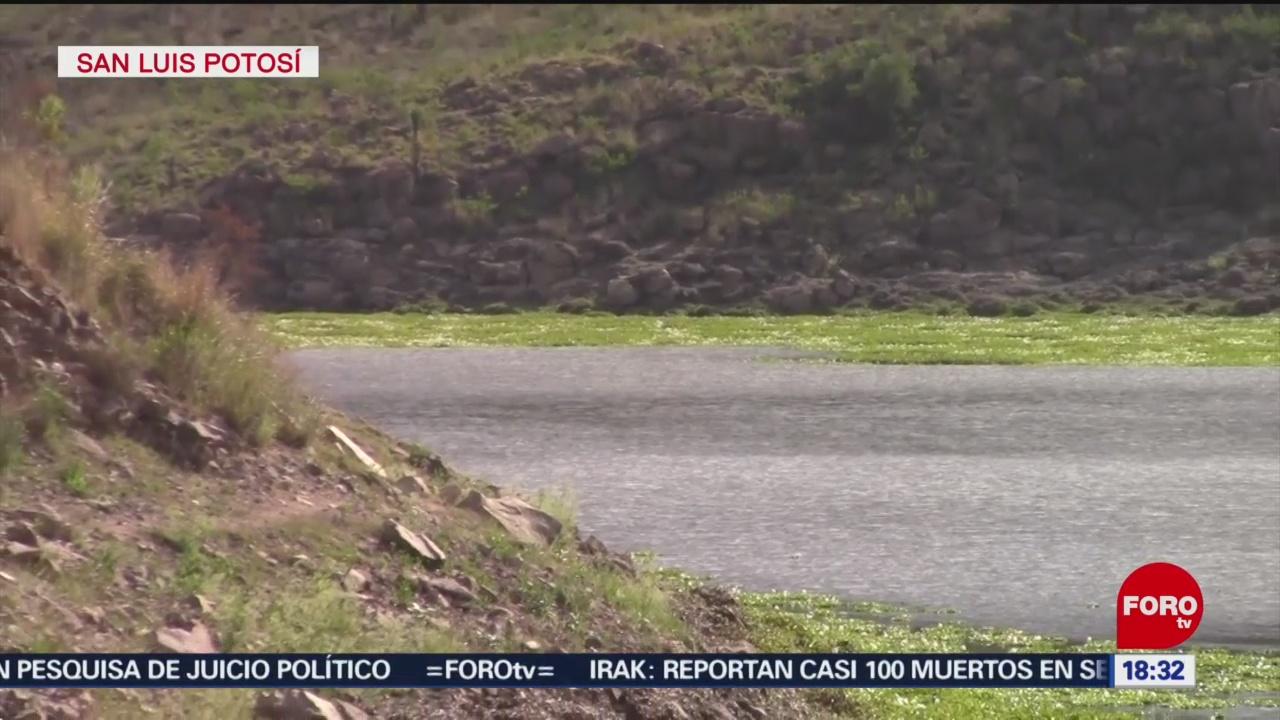 FOTO: Disminuye nivel presas San Luis Potosí