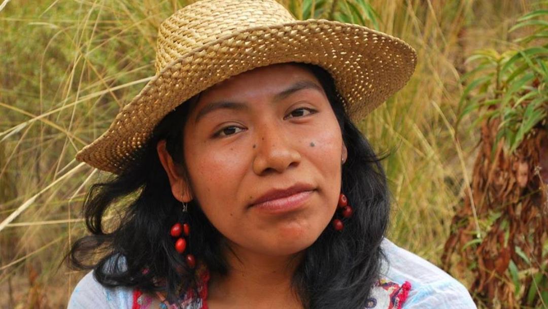 Desaparece Irma Galindo, ambientalista de 36 años, en Oaxaca