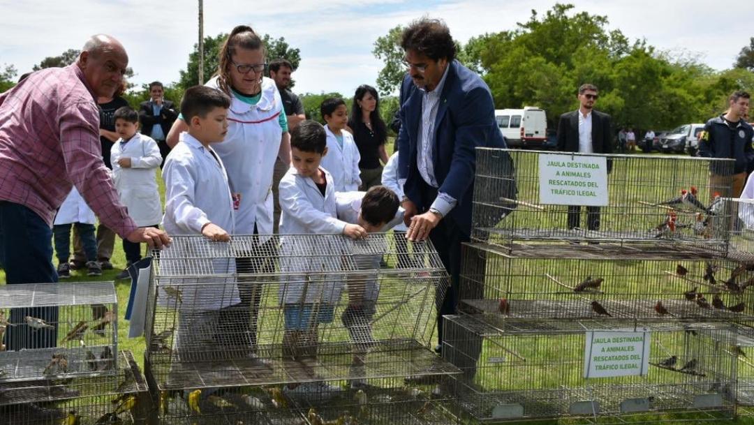 Liberan 600 aves rescatadas del tráfico ilegal