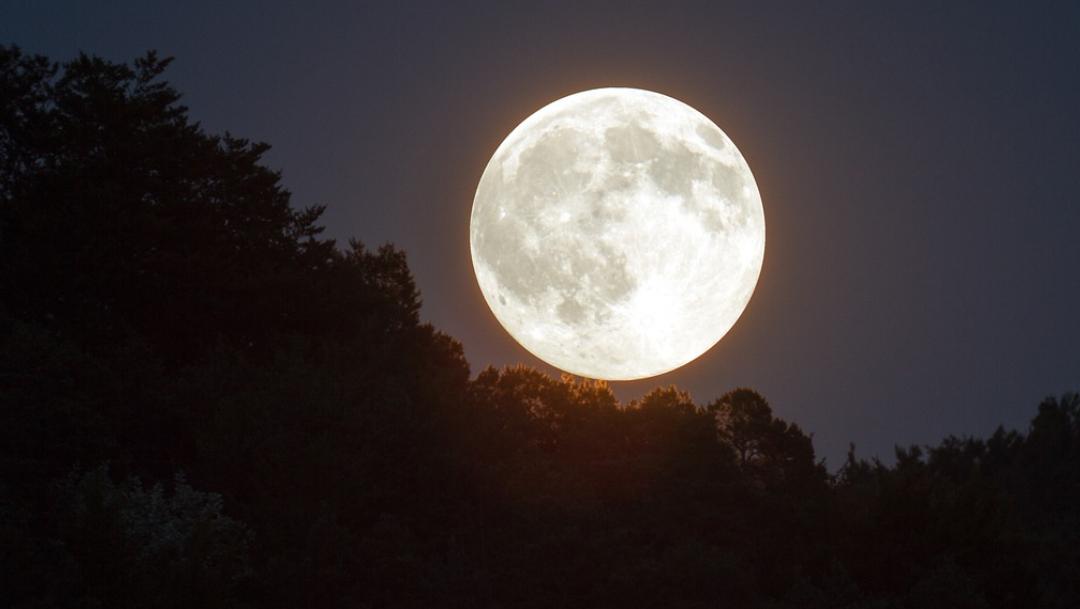 Última luna de la década será visible el 12 de diciembre