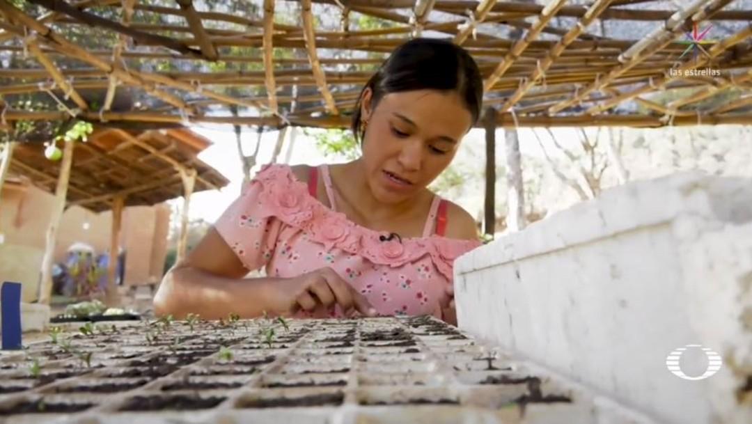 'Jóvenes Construyendo el Futuro' trabajan en granja de Taxco