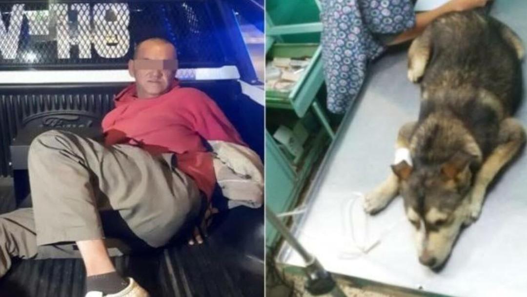 Foto: La organización mexiquense, publicó un mensaje en el que decretaban, de manera oficial, el fallecimiento de la perrita, derivado de sus lesiones