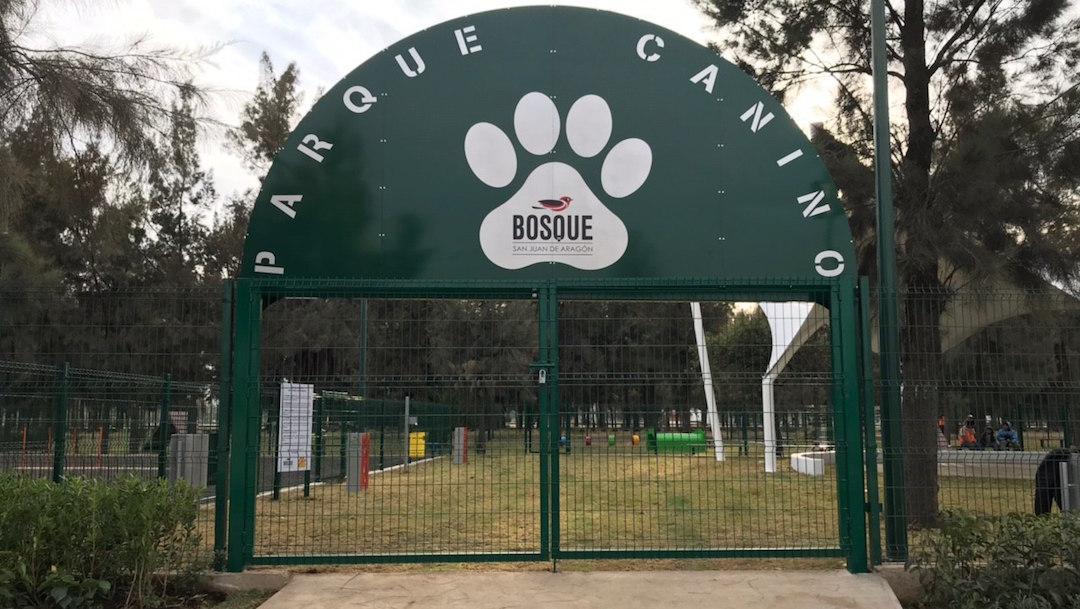 Foto Abrirán parque para perros en el Bosque de Aragón 30 enero 2020