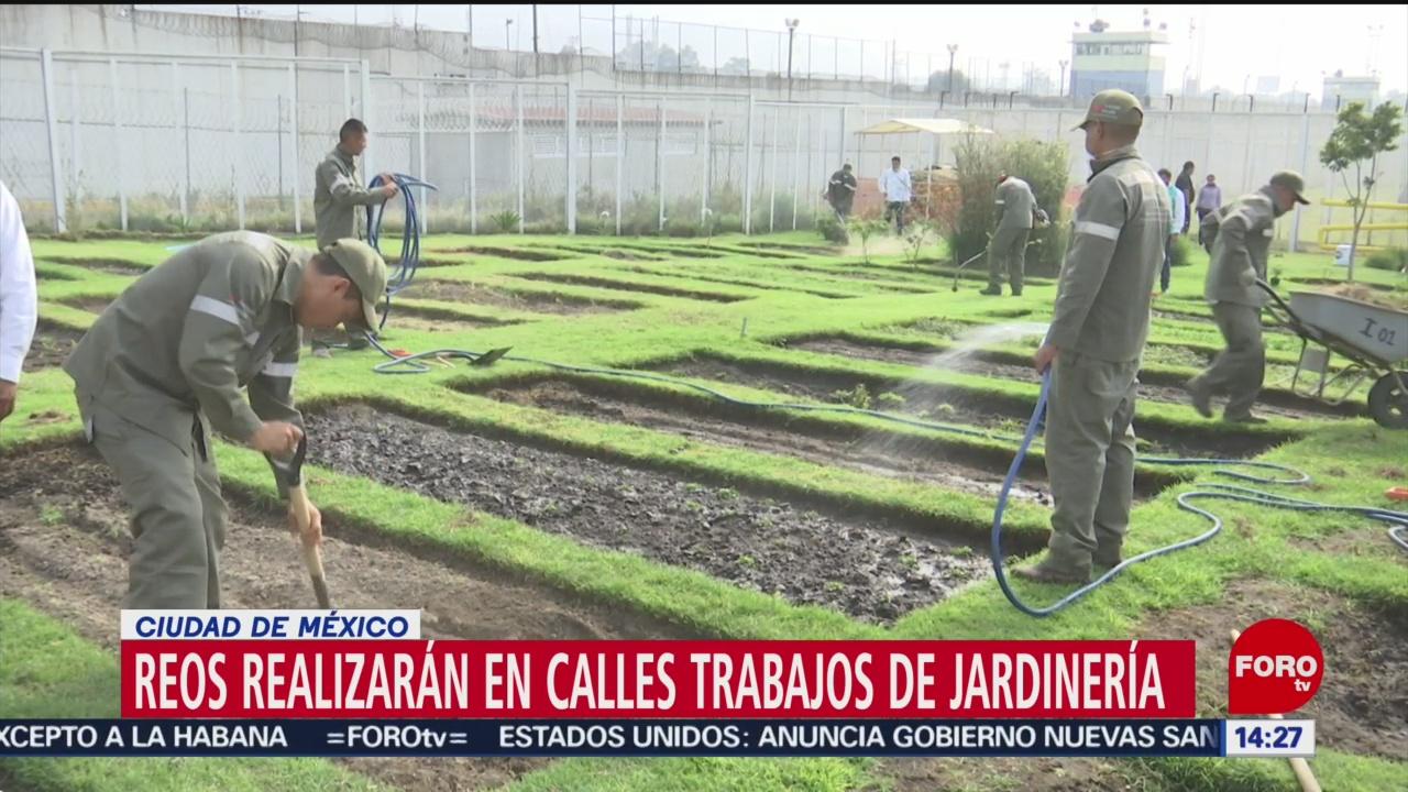 FOTO: reos de santa martha acatitla realizaran trabajos de jardineria en las calles de cdmx