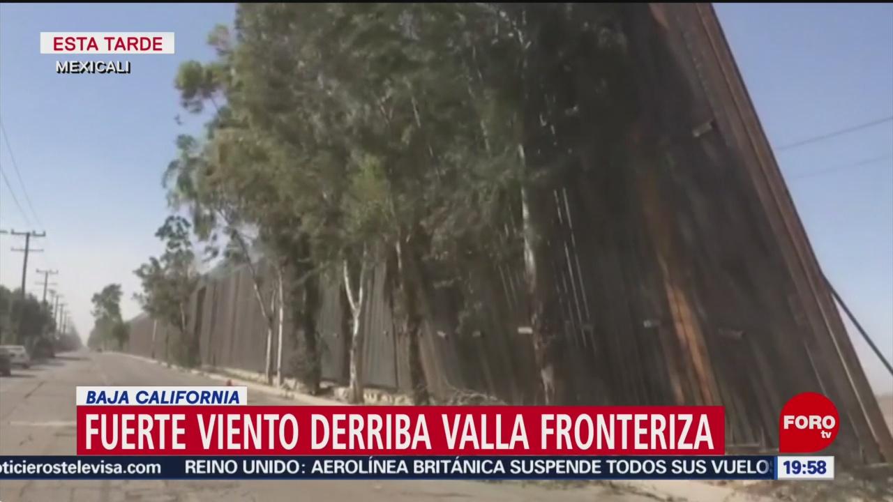 Foto: Viento Derriba Muro Trump Baja California 29 Enero 2020