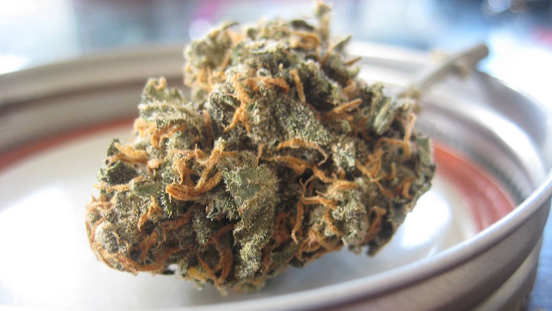 Marihuana podría alterar tus recuerdos: estudios