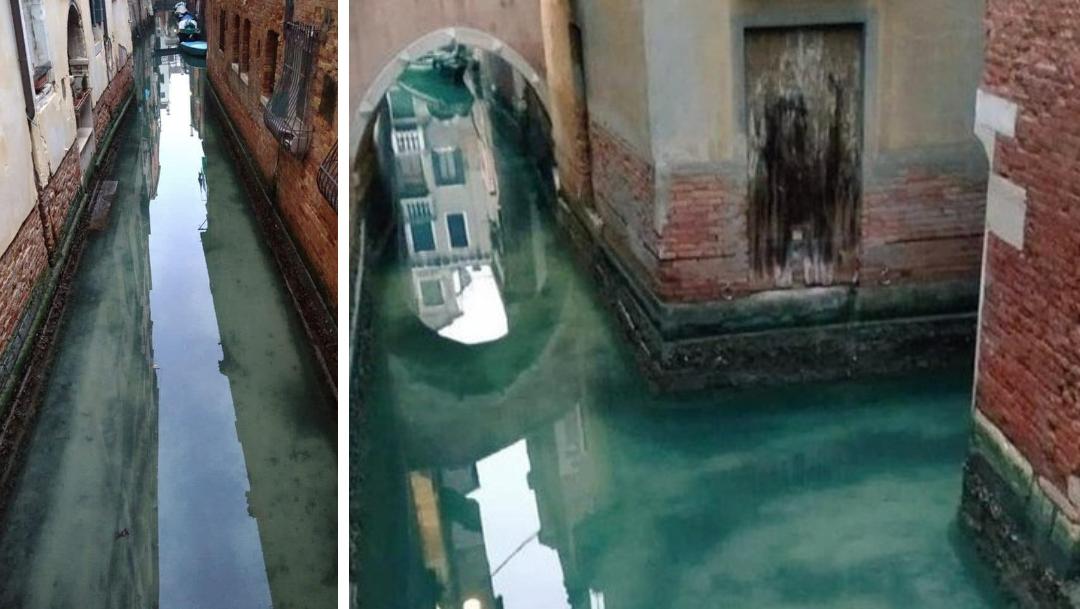 Canales de Venecia cada vez más limpios tras cuarentena