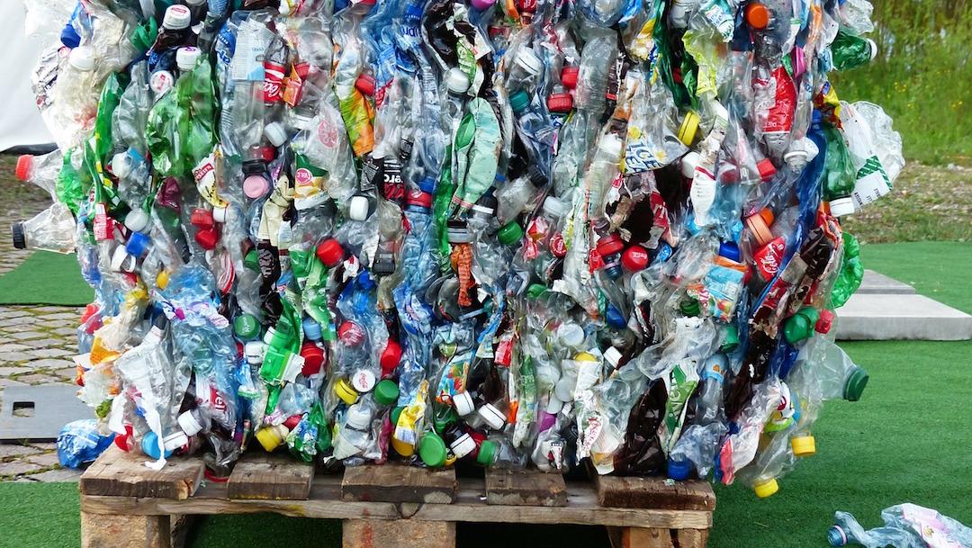Foto Enzima Botellas Plástico Reciclar Abril 2020