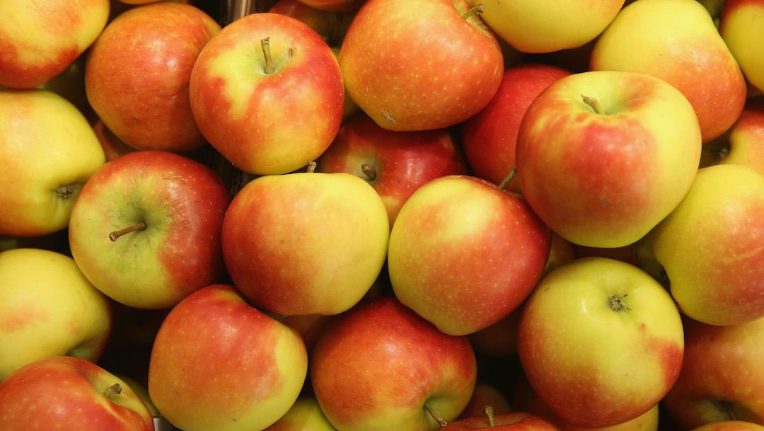 Foto 9 razones por las que es saludable comer manzanas 10 abril 2020
