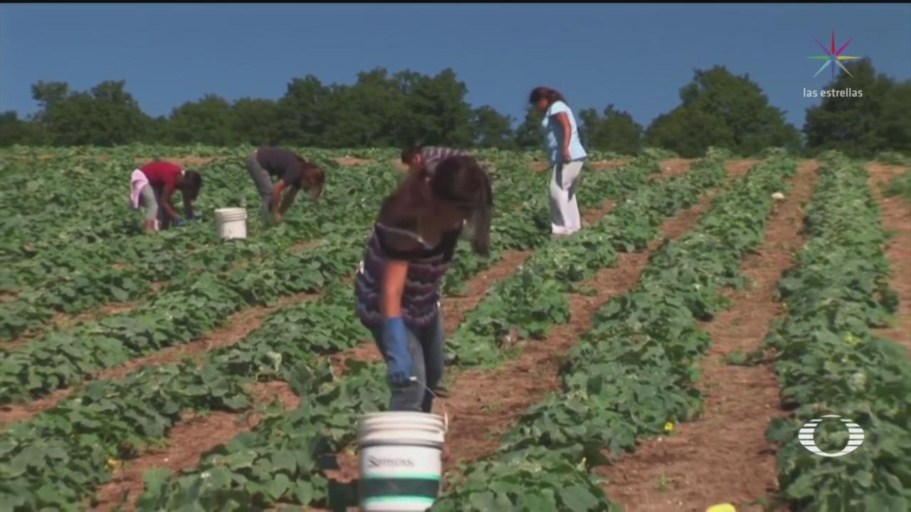 Foto: Migrantes EEUU Continúan Trabajando Pese Cuarentena Covid-19 3 Abril 2020