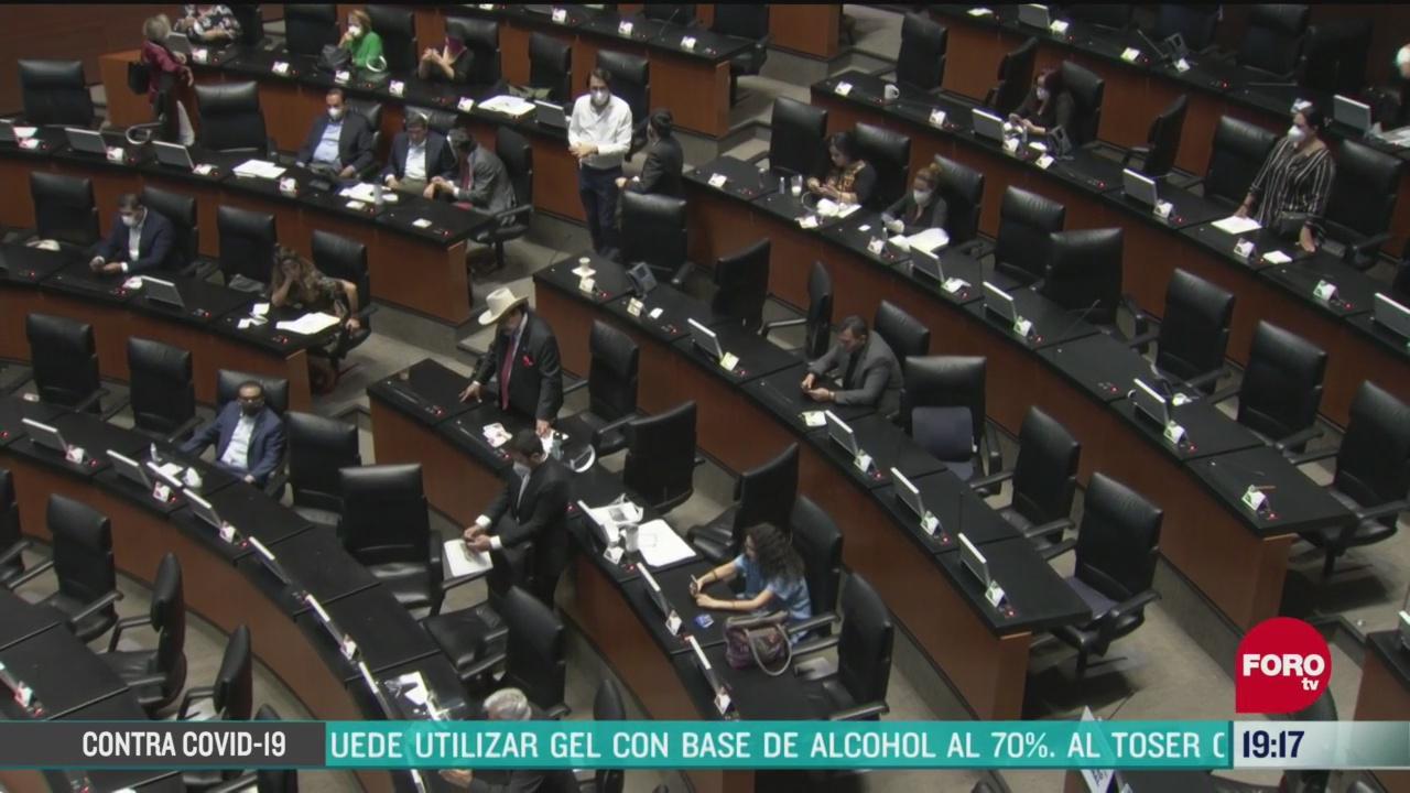 Foto: senado aprueba en lo general y en lo particular ley de amnistia 20 Abril 2020