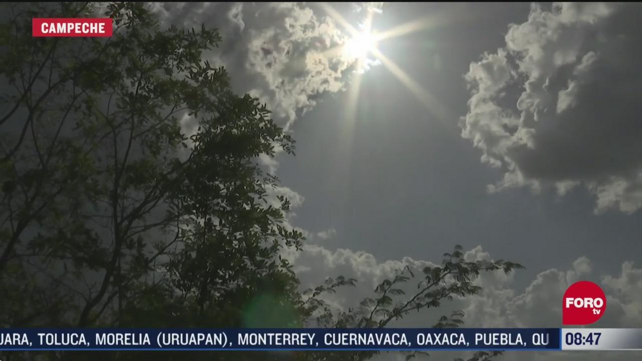 FOTO: 31 de mayo 2020, sequia en campeche afecta a mas de mil campesinos