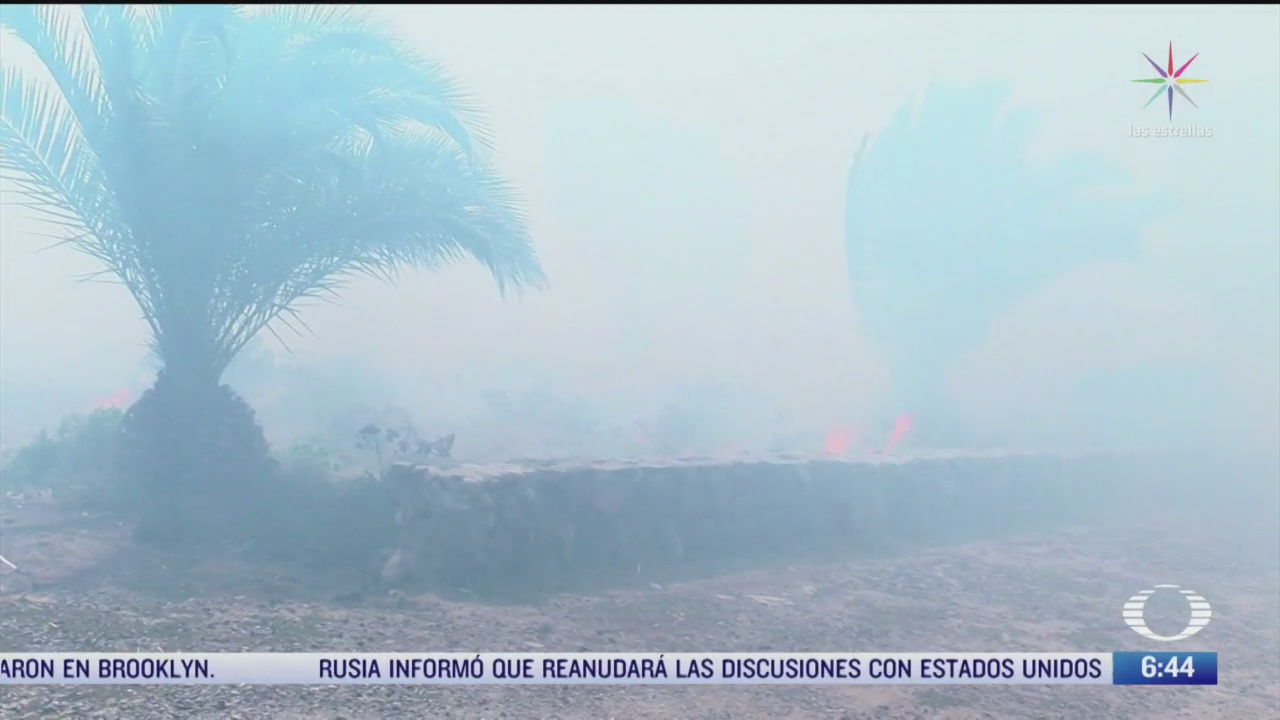 se registran mas de 24 incendios forestales en tijuana