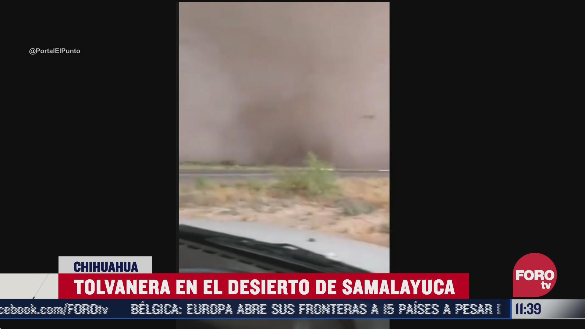 tolvanera en el desierto de samalayuca en chihuahua