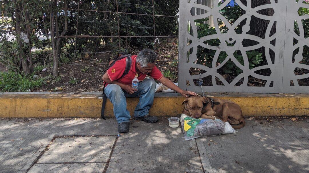 Por pandemia vive en la calle con su perro Canelo en Puebla