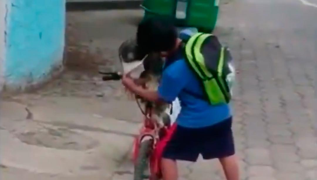 El perrito espero paciente en lo que el niño le colocó el cubrebocas