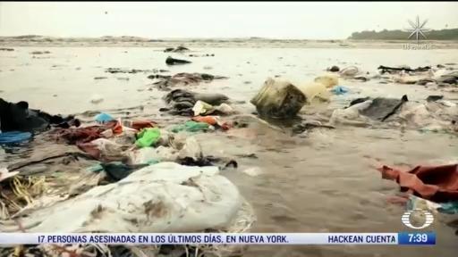 transformar plasticos es un proyecto que surge en oaxaca