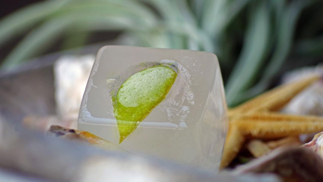 Cómo hacer cubos de hielo con sabor