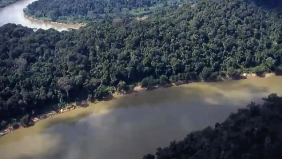 Uno de los desafíos para preservar la cuenca es evitar la deforestación