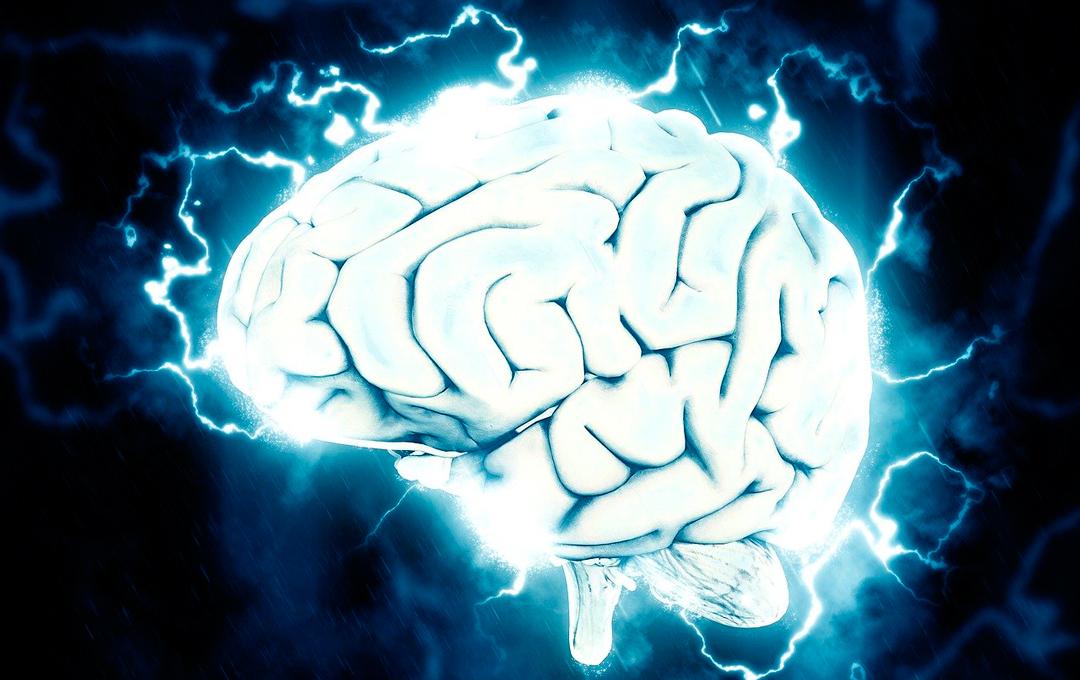Protocolo no invasivo logra borrar recuerdos de miedo de la memoria