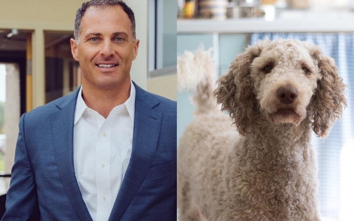 Empresario Jeffrey Previte golpeó a su cachorro de 4 meses en California. (Imagen: Especial)