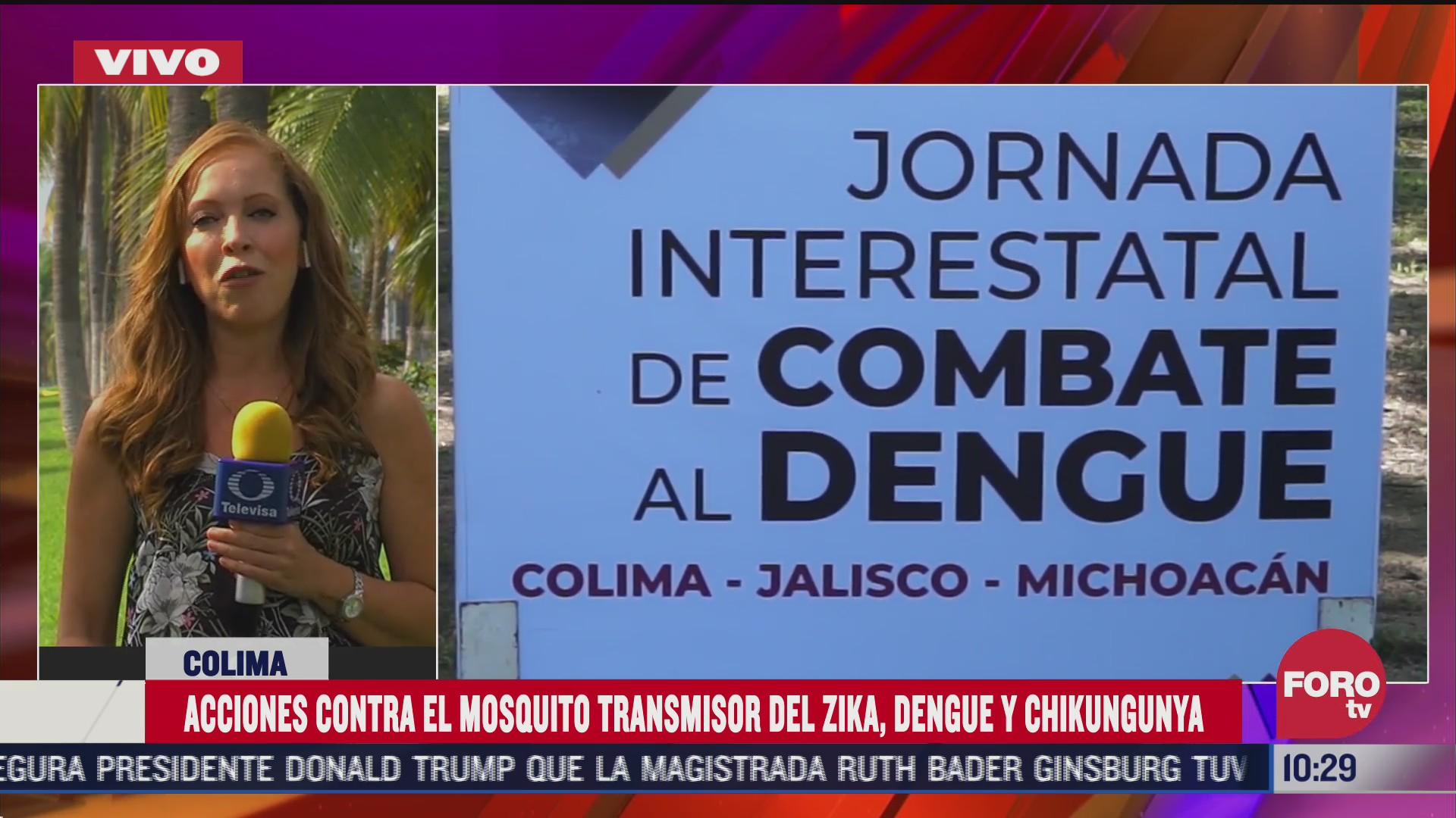 jalisco colima y michoacan inicia operativo contra mosquito transmisor del dengue