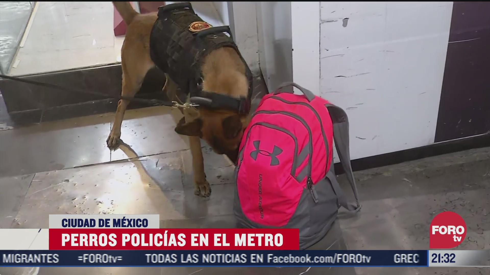 perros policias ayudan a vigilar en el metro cdmx