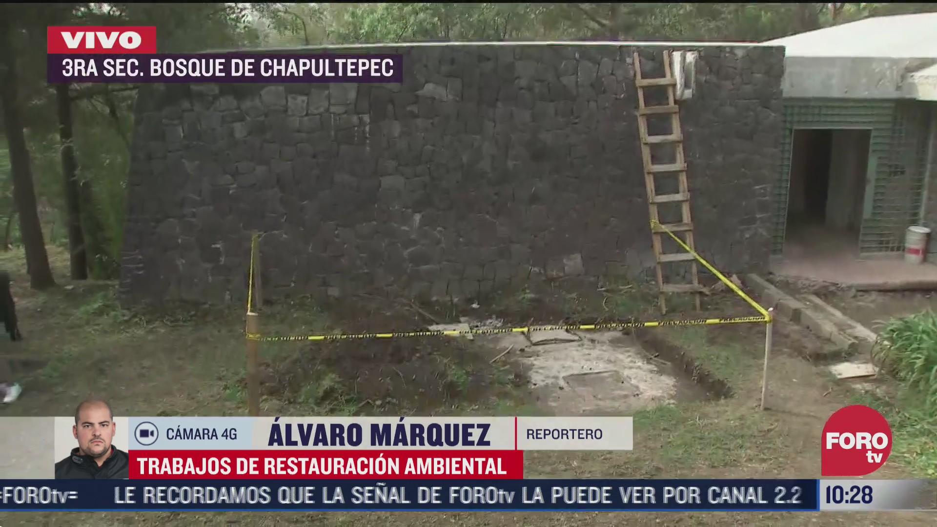 realizan trabajos de restauracion ambiental en chapultepec